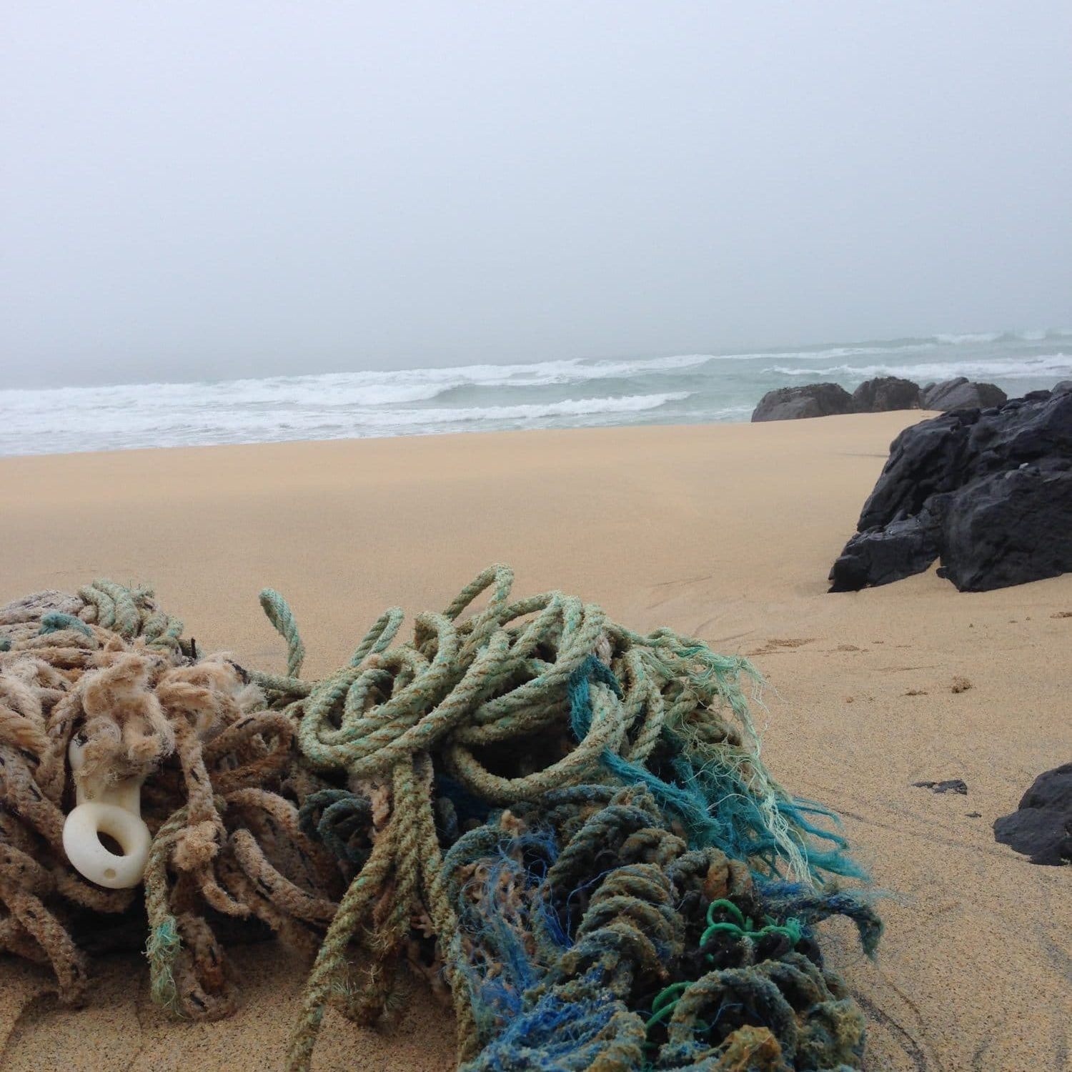Old fishing rope on a misty beach